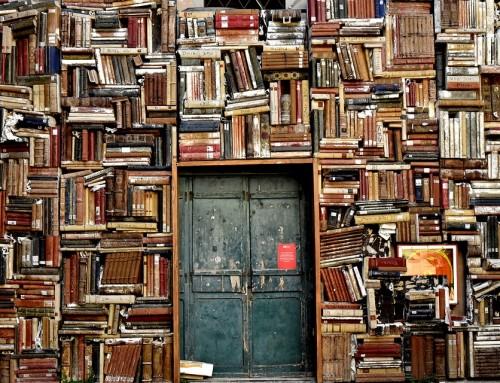 Cómo hacer una biblioteca comunitaria con BASURA (en meses)