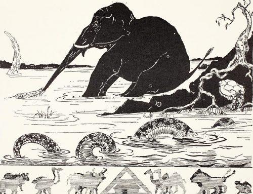 [Fábulas para Niños] El Hijo de Elefante de Rudyard Kipling